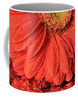 Daisy Reflections Coffee Mug