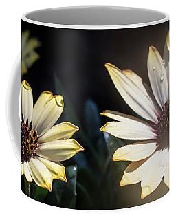 Daisydrops Coffee Mug