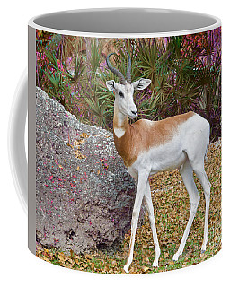 Coffee Mug featuring the painting Dama Gazelle Edition 2 by Judy Kay