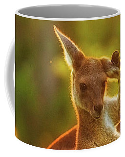 Damn Flies, Yanchep National Park Coffee Mug by Dave Catley