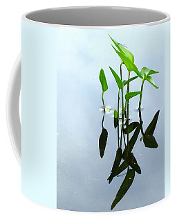 Damselfly In The Mirror Coffee Mug