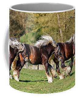 Dance Of The Gypsy Coffee Mug