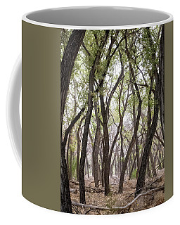 Coffee Mug featuring the photograph Dance Of The Trees by Mary Lee Dereske