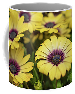 Dance With Daisies Coffee Mug