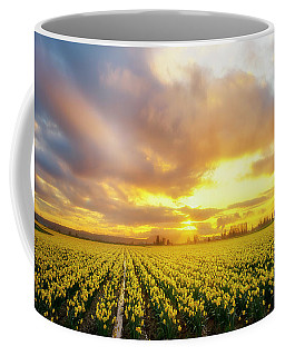 Coffee Mug featuring the photograph Dances With The Daffodils by Ryan Manuel