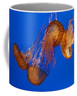 Dancing Sea Nettles Coffee Mug by Venetia Featherstone-Witty
