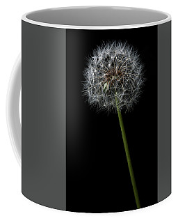 Coffee Mug featuring the photograph Dandelion 1 by James Sage