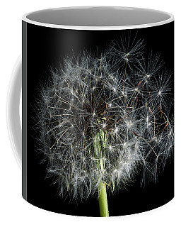 Coffee Mug featuring the photograph Dandelion 2 by James Sage
