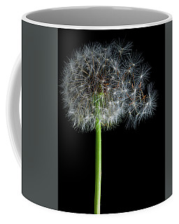 Coffee Mug featuring the photograph Dandelion 3 by James Sage