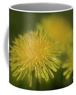 Dandelion After Rain-3835 Coffee Mug