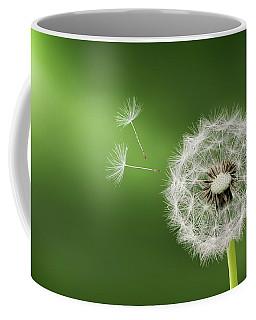 Dandelion Coffee Mug by Bess Hamiti