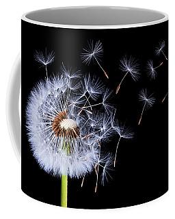 Dandelion Blowing On Black Background Coffee Mug by Bess Hamiti