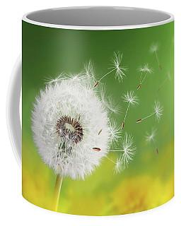 Dandelion Clock In Morning Coffee Mug by Bess Hamiti