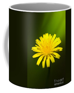 Dandelion Flower Coffee Mug