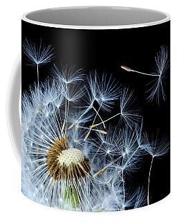Coffee Mug featuring the photograph Dandelion On Black Background by Bess Hamiti