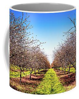 Coffee Mug featuring the photograph Dandelion Stripes by Onyonet  Photo Studios