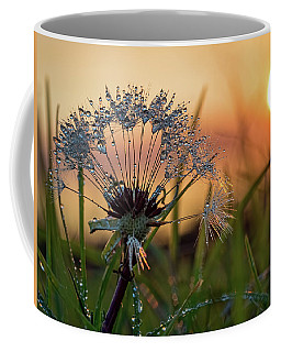 Dandelion Sunset 2 Coffee Mug