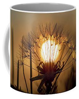 Dandelion Sunset Coffee Mug