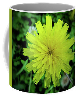 Dandelion Symmetry Coffee Mug