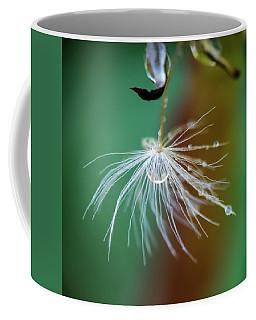 Dandelion Water Drop Macro 2 Coffee Mug
