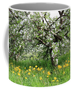 Dandelions And Apple Blossoms Coffee Mug