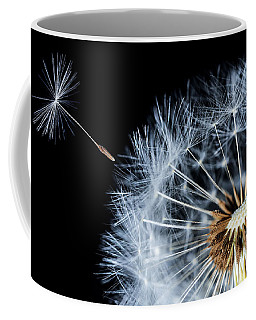 Coffee Mug featuring the pyrography Dandy by Bess Hamiti