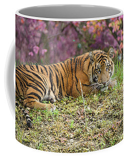 Coffee Mug featuring the painting Dangerously Beautiful by Judy Kay