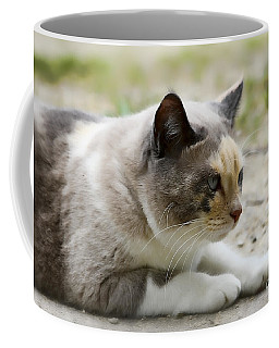 Coffee Mug featuring the photograph Danni Girl 2 by Teresa Zieba