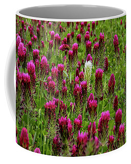Coffee Mug featuring the photograph Dare To Be Different by Barbara Bowen