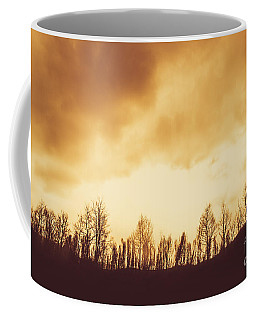 Coffee Mug featuring the photograph Dark Afternoon Woodland by Jorgo Photography - Wall Art Gallery