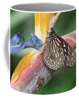 Coffee Mug featuring the photograph Dark Blue Tiger Butterfly - 1 by Paul Gulliver