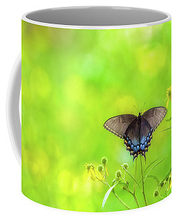 Coffee Mug featuring the photograph Dark Morph Female Tiger Swallowtail Butterfly by Lori Coleman