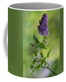 Dark Violet Lilac Coffee Mug
