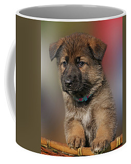 Coffee Mug featuring the photograph Darling Puppy by Sandy Keeton