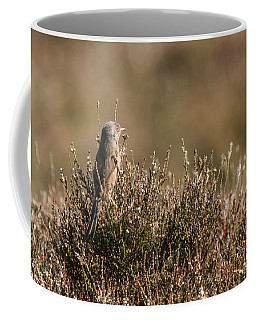 Dartford Warbler Coffee Mug