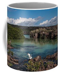 Darwin Bay     Genovesa Island      Galapagos Islands Coffee Mug