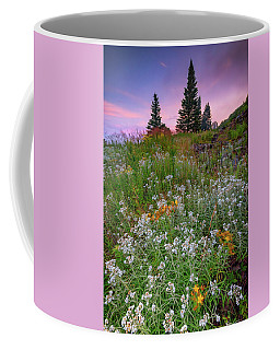 Coffee Mug featuring the photograph Dawn At Height Of Land by Rick Berk