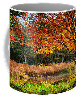 Dawn Lighting Rhode Island Fall Colors Coffee Mug