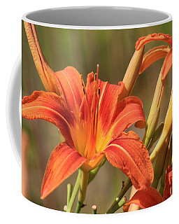 Coffee Mug featuring the photograph Day Lilies In The Wild 1 by Joseph C Hinson Photography