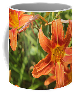 Coffee Mug featuring the photograph Day Lilies In The Wild 2 by Joseph C Hinson Photography