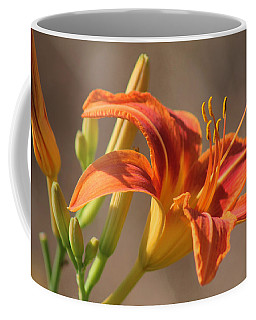 Coffee Mug featuring the photograph Day Lilies In The Wild 3 by Joseph C Hinson Photography