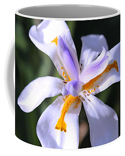 Day Lily 3 Coffee Mug