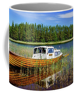 Coffee Mug featuring the photograph Daydreaming by Dmytro Korol
