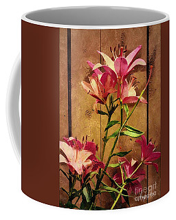 Dayliliys In  Guilford , Conn Coffee Mug