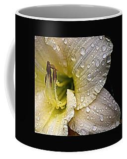 Daylilly 1 Coffee Mug