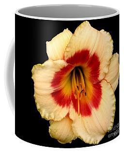 Daylily 3 Coffee Mug by Rose Santuci-Sofranko