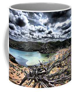 Dead Nature Under Stormy Light In Mediterranean Beach Coffee Mug by Pedro Cardona