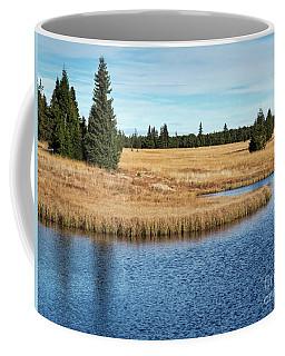 Dead Pond In Ore Mountains Coffee Mug by Michal Boubin