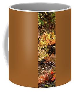 3 Of 6 Dead River Falls  Marquette Michigan Section Coffee Mug