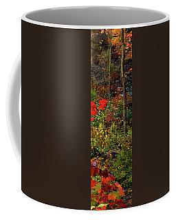 6 Of 6 Dead River Falls  Marquette Michigan Section Coffee Mug